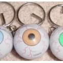 Gliding Eyeball Keychain 1in.